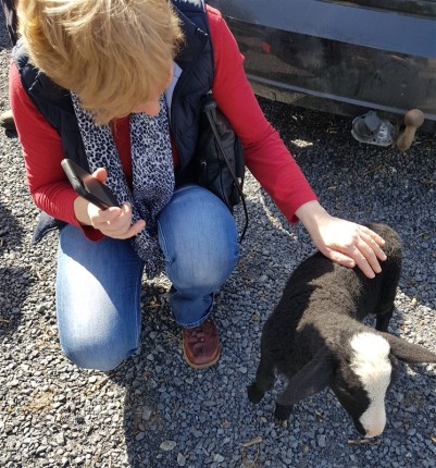 handweavers-guild-cork-road-trip-spring-2018-olwyn's-new-friend