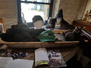 handweavers-guild-cork-road-trip-spring-2018-zwartbles-education-space