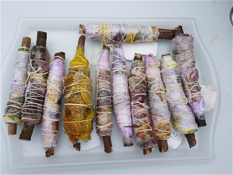 Eco Dyeing Day